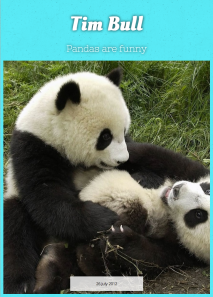 Pandas Are Funny
